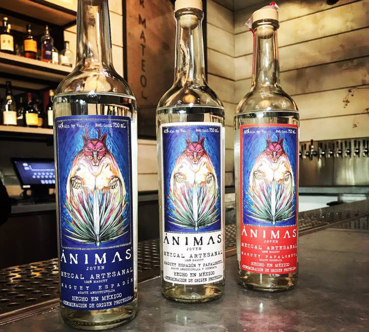 Animas Mezcal Talk